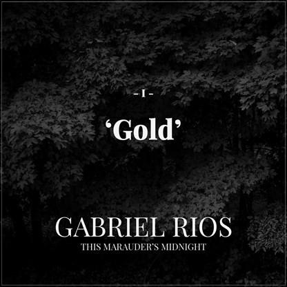 Gabriel Rios - Gold (Thomas Jack Radio Edit)