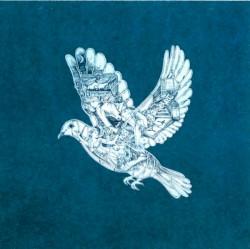 Coldplay - Magic (Radio Edit)